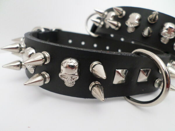 french bulldog spiked dog collar with 12mm spikes and skulls 24mm wide GBP 14.99