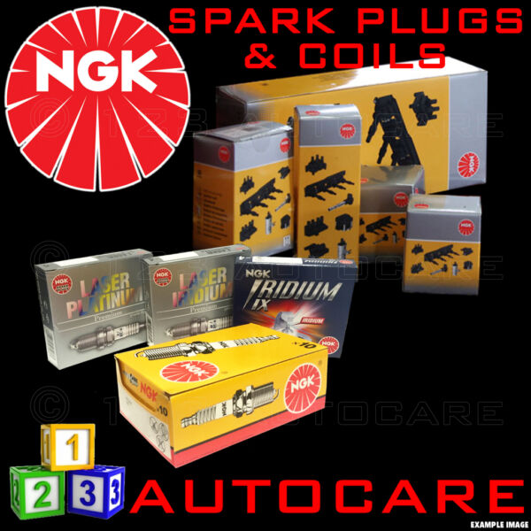 NGK Platinum Spark Plugs & Ignition Coil PFR5G-11E (3000) x8 & U5102 (48319) x8