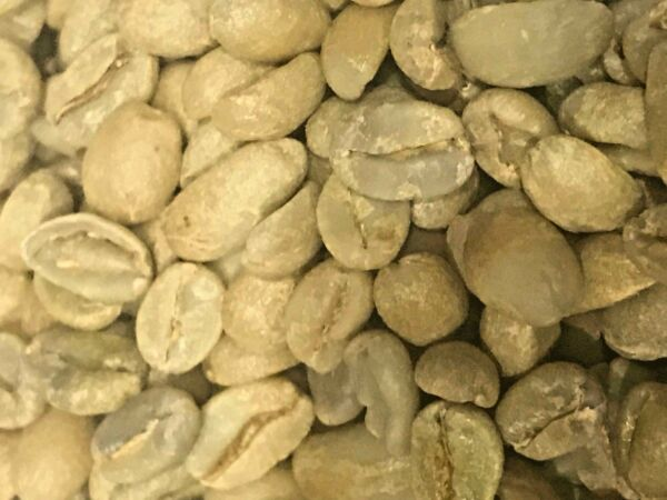 green coffee beans Costa Rica Natural Process. Choose your size 3510 20 Pd