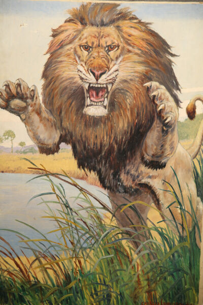 African Lion Early 20th Century Modern American Animal Painting