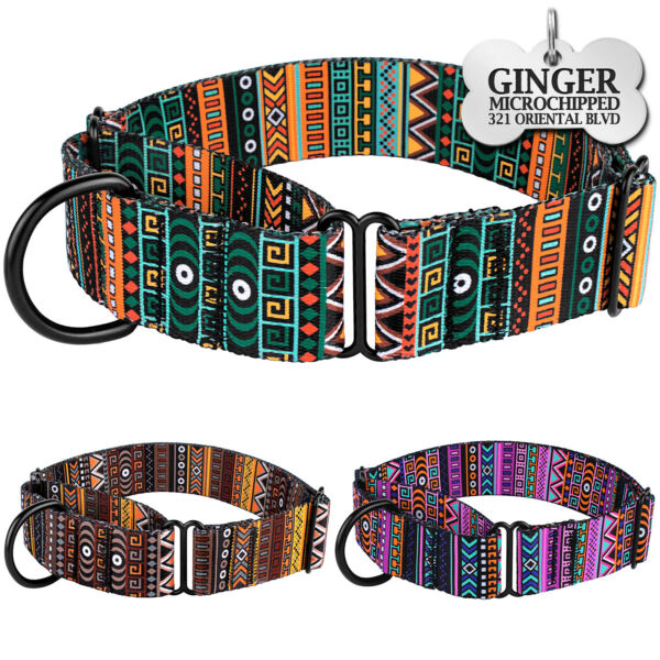 Martingale Dog Collar Nylon Personalized Dog Collars for Dogs Safety Training $13.99