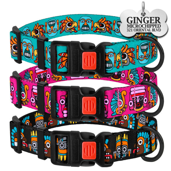 Fancy Dog Collar Personalized Collar with Dog Tags for Dogs Puppy Collars S M L $8.99