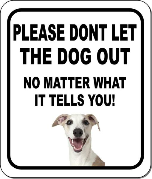 PLEASE DONT LET THE DOG OUT Whippet Metal Aluminum Composite Sign $19.79