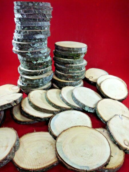 25 PINE WOOD SLICES 3 1 2quot; WOODEN CRAFTS WEDDING ORNAMENTS COASTERS ROUNDS $15.99