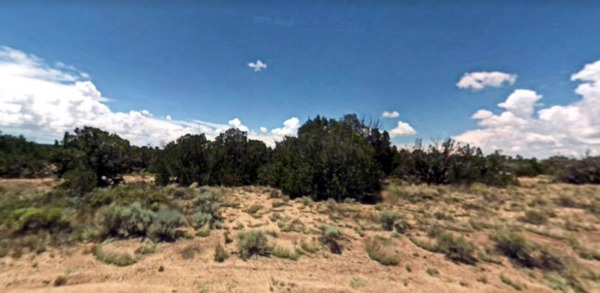 Beautiful Treed 5 Acre Lot outside of St Johns, Arizona Great Location