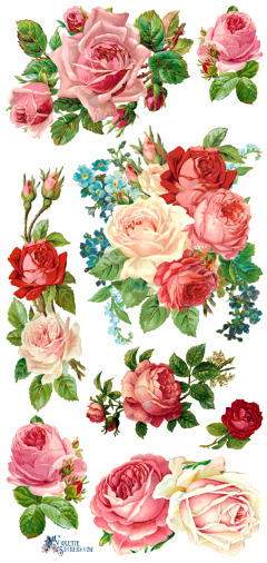 VIOLETTE STICKER PANEL -  PINK and RED ROSES