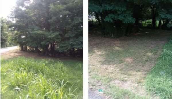 626 E Person Ave. Memphis, TN 38106 Vacant Residential Lot 55'x50'