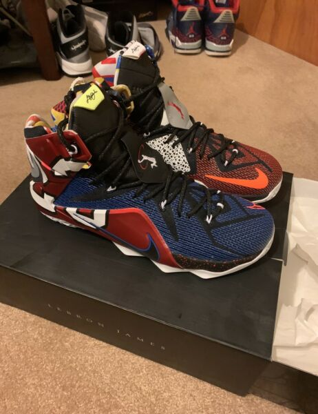 Lebron 12 XII What The Size 13