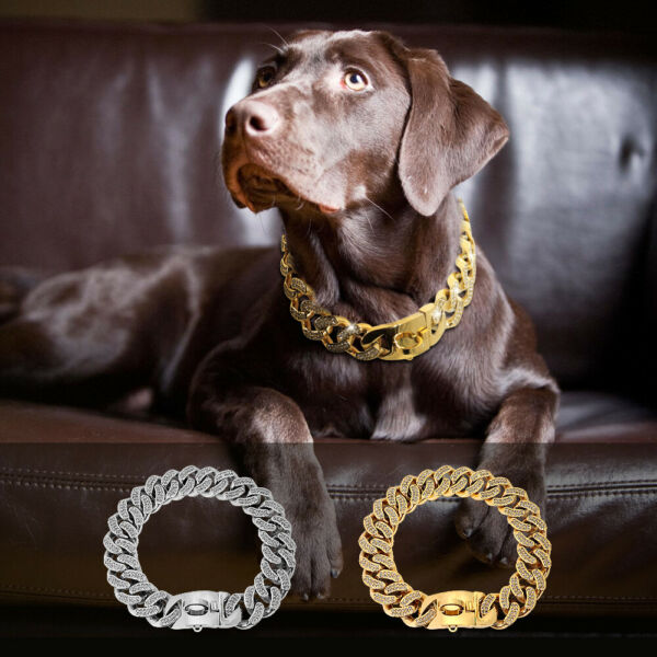 Rhinestone Dog Gold Collar Chain Luxury Dog Necklace Link for Medium Large Dogs $99.99