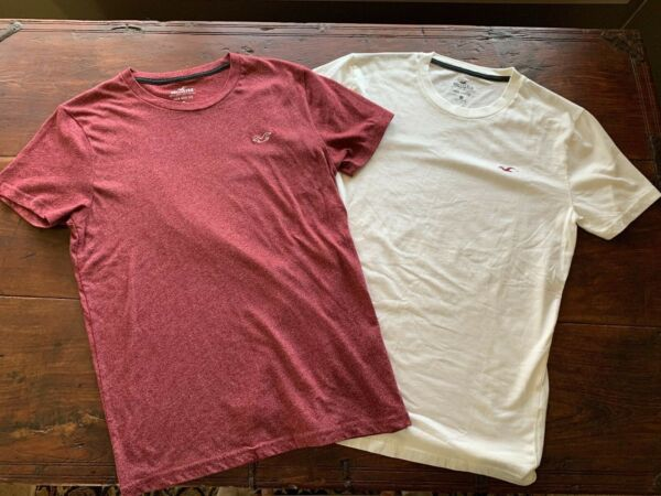 EUC Hollister Must Have Mens Tee Shirt Lot of Two Short Sleeve XS Extra Small $12.00