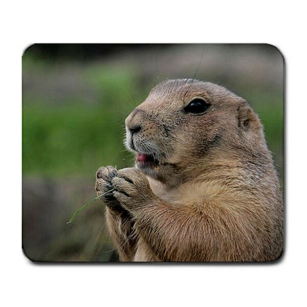 Prairie Dog Large THICK Mousepad Mouse Pad Great Gift Idea $7.99