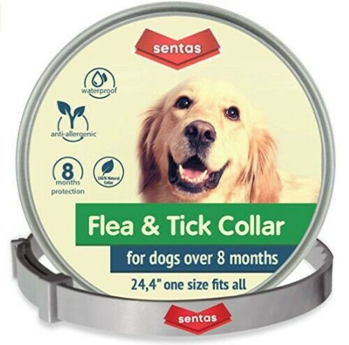 Dog Tick and Flea Collar Flea and Tick Prevention for Dogs Over 8 Months $16.99