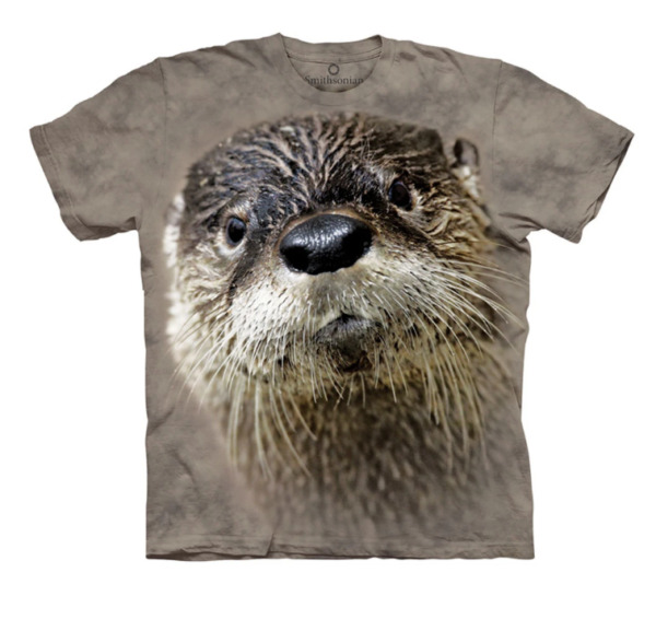 The Mountain Kids Short Sleeves Graphic T Shirt Otter $12.90