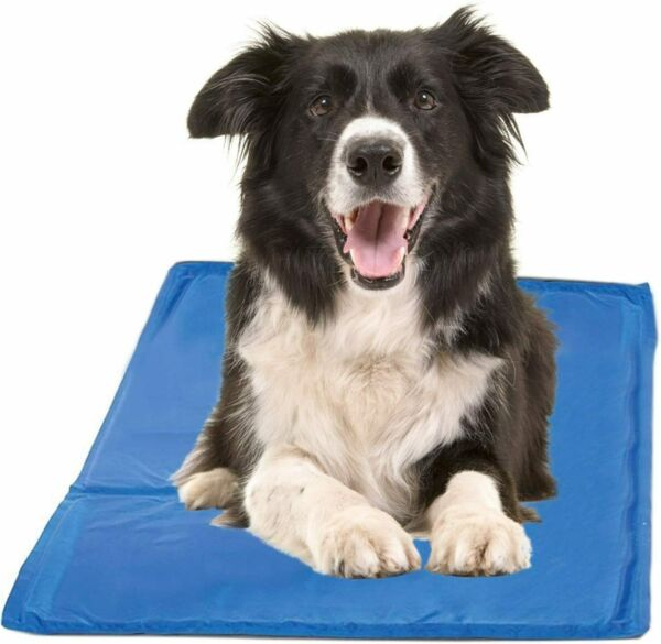 Gel Cooling Mat for Dogs and Cats Self Cooling Dog Bed Summer Sleeping Gel Pad $16.99