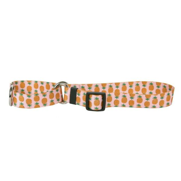 Yellow Dog Design Pineapples Pink Martingale Dog Collar Small 3 4 Wide and f... $11.56