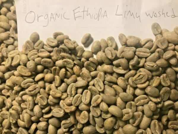 organic green coffee beans Ethiopia Limu washed Process 20 pounds.