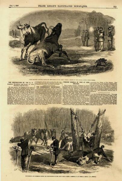 Supplying of Cattle for the Union Army Civil War Leslie#x27; s 1863 $11.40