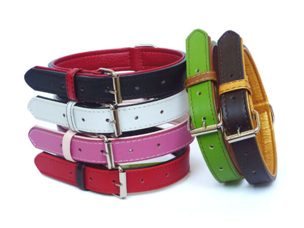 DOG COLLARS AND LEADS IN SOFT FUSION LEATHER FOR THE FASHIONABLE DOG GBP 12.95