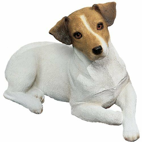 Sandicast Original Size Brown and White Jack Russell Terrier Sculpture Lying N