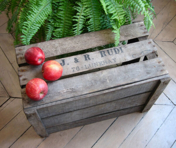 "Vintage French Apple Crate from Normandy Wood Stamped ""J. & R. Rudi"""