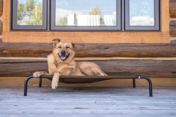 FurHaven Pet Elevated Cot Dog Bed Hammock $29.99