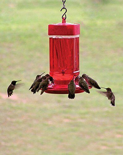 FIRST NATURE LARGE 32 oz HUMMINGBIRD FEEDER #3055 MADE IN THE USA dm $12.97