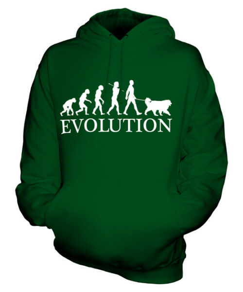 BERNESE MOUNTAIN DOG EVOLUTION OF MAN UNISEX HOODIE MENS WOMENS LADIES DOG GIFT