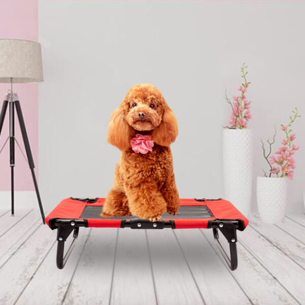 Elevated Camping Pet Cot Raised Dog Cat Lounger Bed Indoor Outdoor Portable Red $22.99