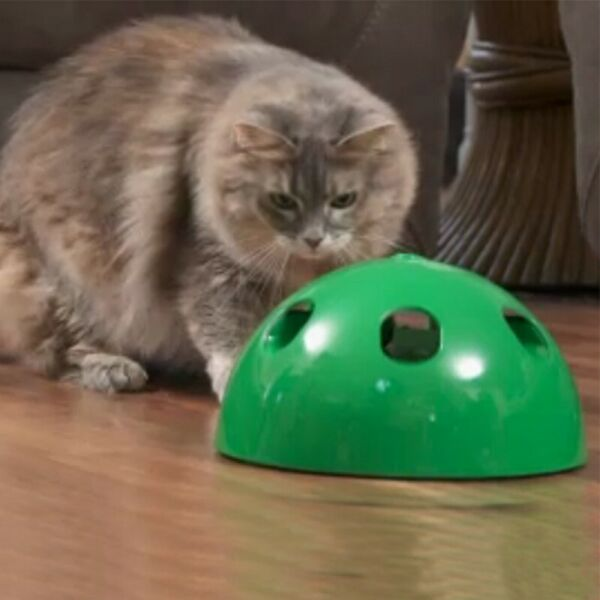 Cat Automatic Pop- N' Play Interactive Motion Mouse Tease Electronic Pet Toy New