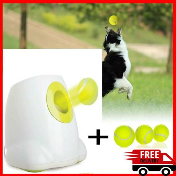 Interactive Automatic pet Dog Tennis Launcher With Sections emission and 3 Balls