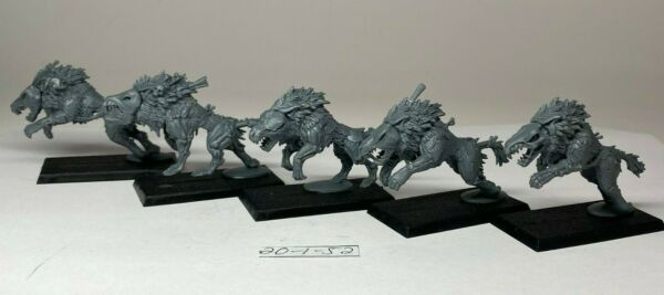 Warhammer AOS - Vampire Counts - Dire Wolves x 5
