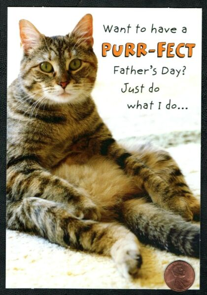 FATHER'S DAY Cat Kitten Humorous -  FROM THE CAT -  Father's Day Greeting Card