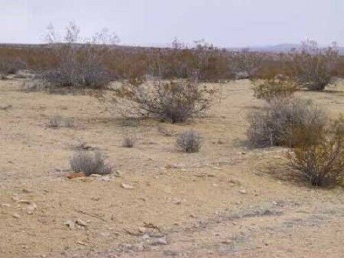 PRICE REDUCED DUE TO VIRUS - 5.04 ACRES CALIFORNIA CITY (KERN COUNTY)