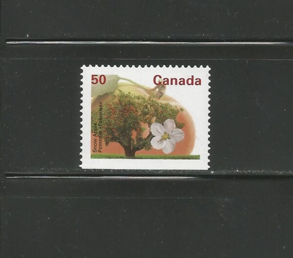 BOOKLET SINGLE SNOW APPLE # 1365as BOTTOM
