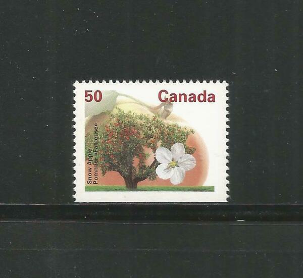 BOOKLET SINGLE SNOW APPLE # 1365b BOTTOM
