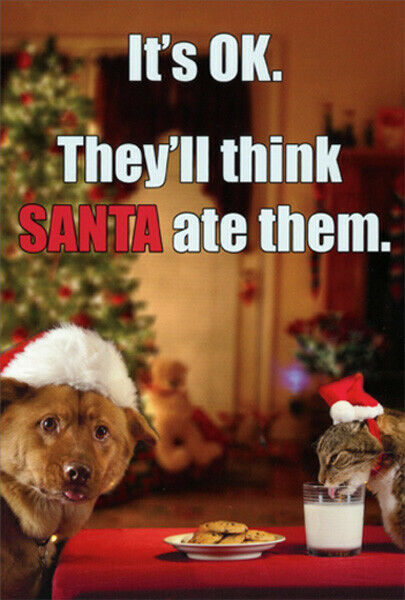Dog and Cat Eating Santas Cookies Box of 12 Humorous Funny Christmas Cards $16.99