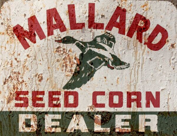 TIN SIGN quot;Mallard Seed Corn quot; Farm Art Deco Garage Wall Decor $7.35