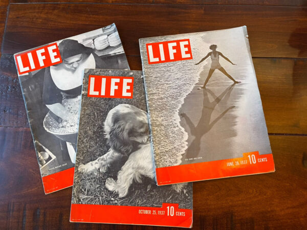 Vintage LIFE Magazine lot 3 Beach Siste Nun Dog Covers from 1937 $29.99