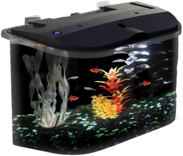 5 Gallon Fish Tank Starter Kit Aquarium Small Desktop Acrylic With Filter LED $59.62