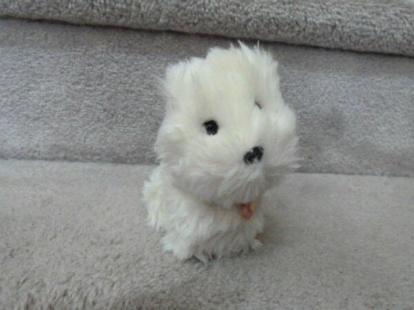 VINTAGE 2011 American Girl Doll Plush Dog COCONUT White West Highland Terrier 5quot; $14.99