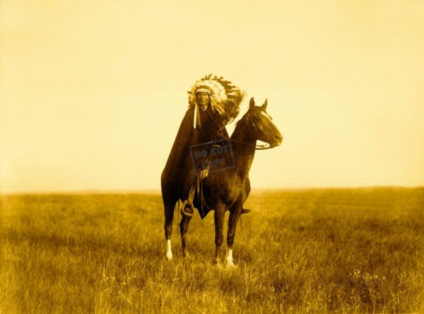 Edward Curtis The Prairie Chief Giclee Fine Art Print Open Edition Reproduction