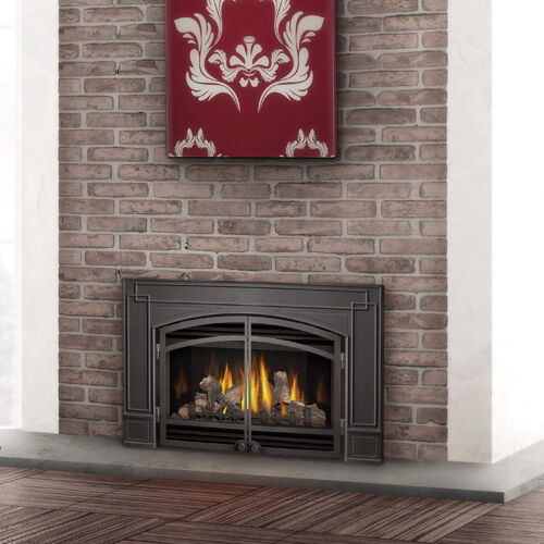 Napoleon Direct Vent Gas Fireplace GDI 30NSB