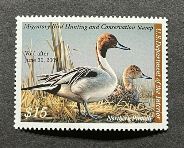 WTDstamps #RW75 2008 US Federal Duck Stamp Mint OG NH
