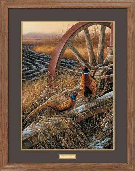 Rustic Outlook - Pheasants GNA Premium Framed Print by Rosemary Millette