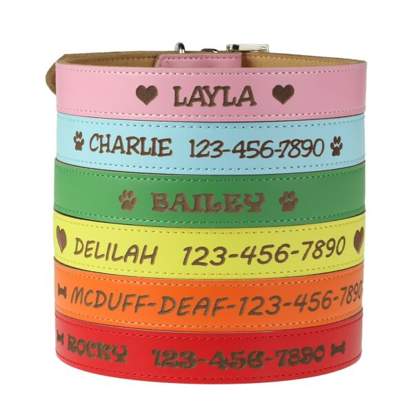 Customized BoyGirl Dog Collar with Name - Personalized Custom Engraved Leather