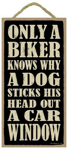 Only A Biker Knows Why A Dog Sticks His Head Out A Car Window 10quot;x5quot; sign 425 $9.99