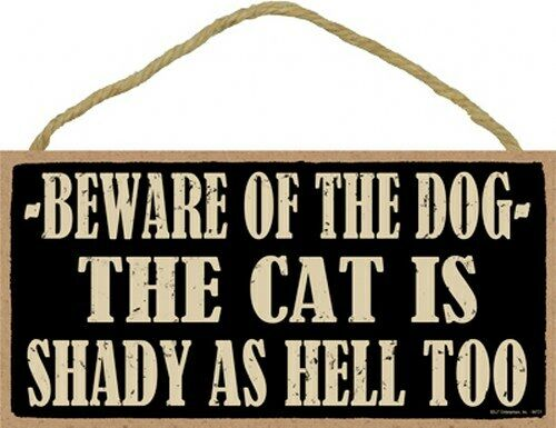 Beware Of The Dog The Cat Is Shady AS HELL TOO Funny Hanging Dog Sign 5quot;x10quot; 772 $9.99