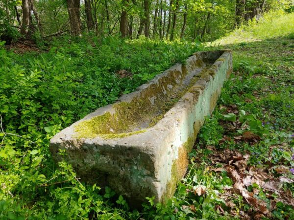 Carved Long Antique Stone Trough