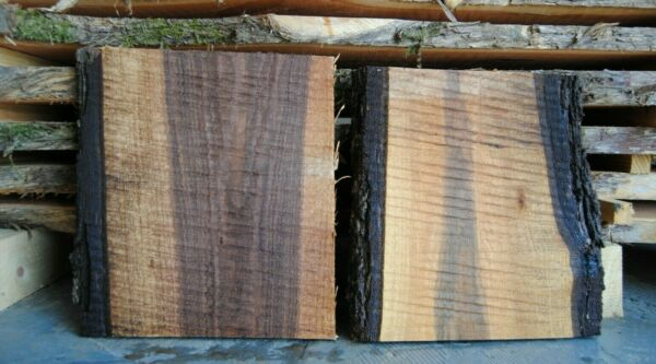 2pc Live Edge Walnut Craft Wood Slabs Cutting Board Blank Kiln Dried Lumber