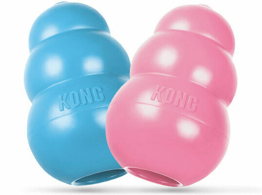 NEW KONG KP3 Small Puppy Dog Pet Teething Chew Toy PinkBlue